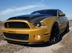 Ford Mustang Shelby GT 640 Golden Snake